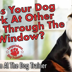 How Do I Make My Dog Stop Barking At Other Dogs Through The Window? - Tips From Al The Dog Trainer