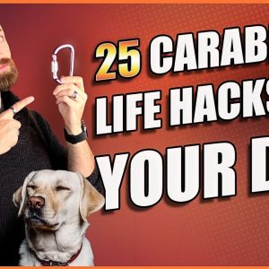 Best Dog Accessory? 25 Carabiner Life Hacks for Your Dog