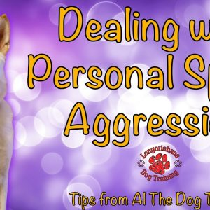 Dealing with Personal Space Aggression - Tips From Al The Dog Trainer
