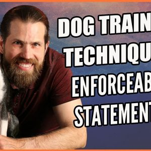 Why You Should Use Enforceable Statements with Your Dog - Dog Training Techniques