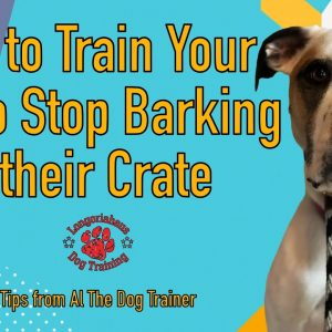 How to Train Your Dog to Stop Barking in their Crate - Tips From Al The Dog Trainer