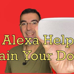 Can Alexa Help You Train Your Dog? Introducing Al the Dog Trainer, An Amazon Alexa Skill.