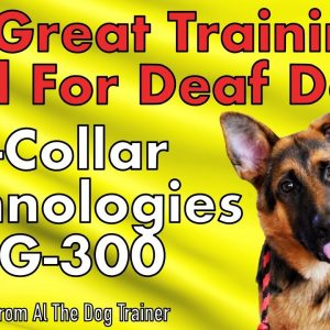 E-Collar Technologies PG-300, Great Tool For Training A Deaf Dog - Tips From Al The Dog Trainer