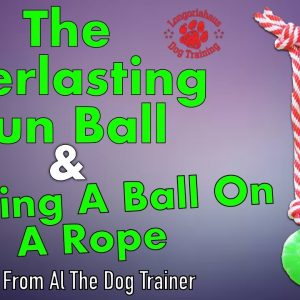 The Everlasting Fun Ball And Making A Ball On A Rope - Tips From Al The Dog Trainer