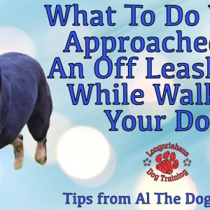 What To Do When Approached By An Off Leash Dog While Walking Your Dog - Tips From Al The Dog Trainer