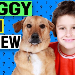 Doggy Dan Online Dog Trainer Review - Does It Really Work?