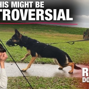 This is my LAST CHANCE... We're not even close. Reality Dog Training Episode 4
