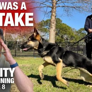 [Controversial] Watch 'til the end to see my BIGGEST MISTAKE so far... Reality Dog Training
